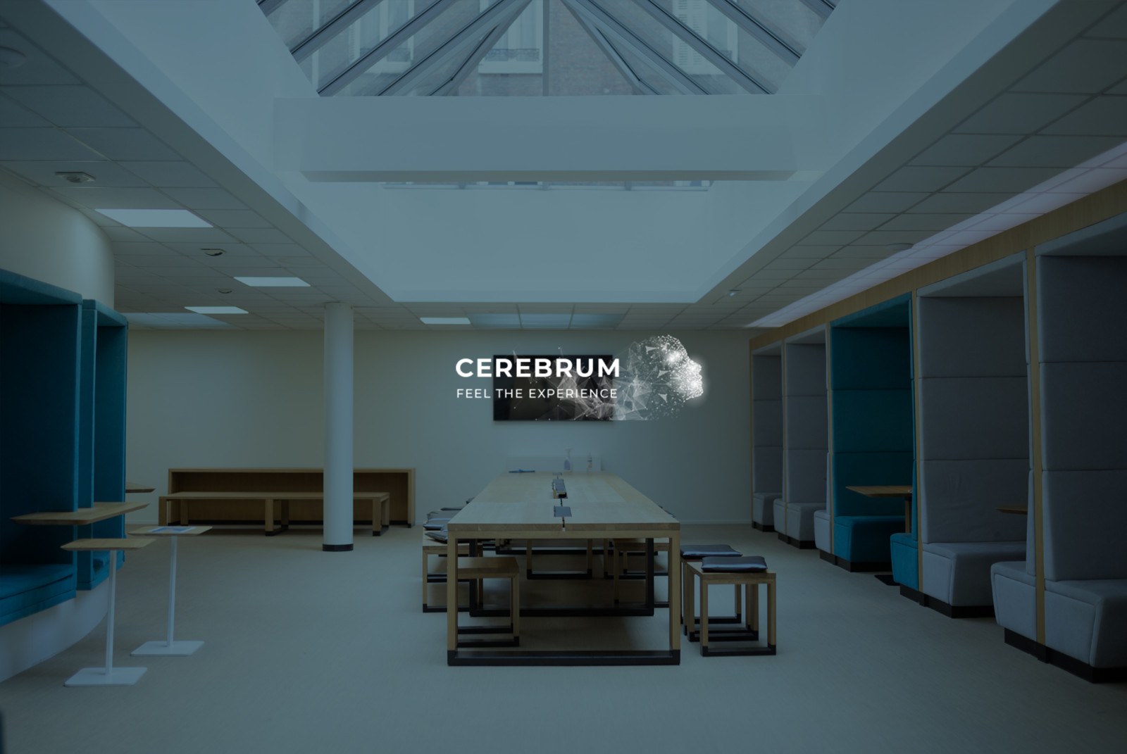 Cerebrum - Feel the experience